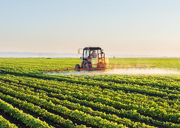 Farm equipment in field watering plants